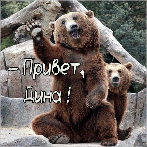 Открытка Дина привет - скачать бесплатно на otkrytkivsem.ru