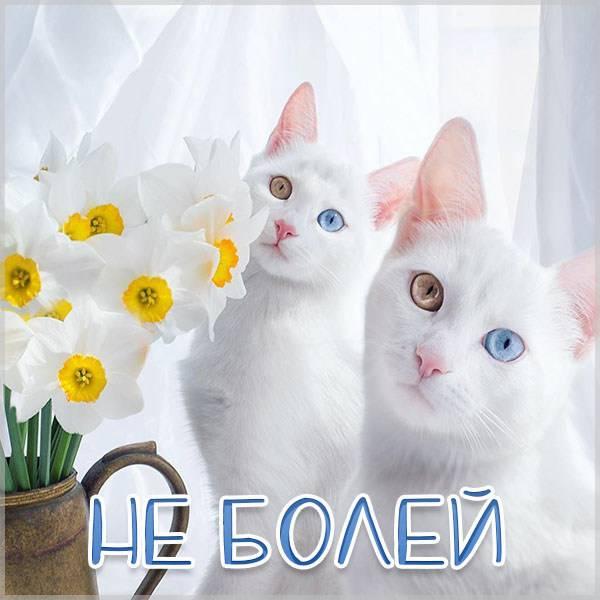 Открытка для больного ребенка - скачать бесплатно на otkrytkivsem.ru