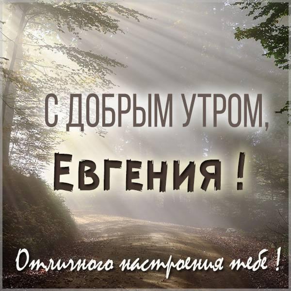 Открытка для Евгении с добрым утром - скачать бесплатно на otkrytkivsem.ru