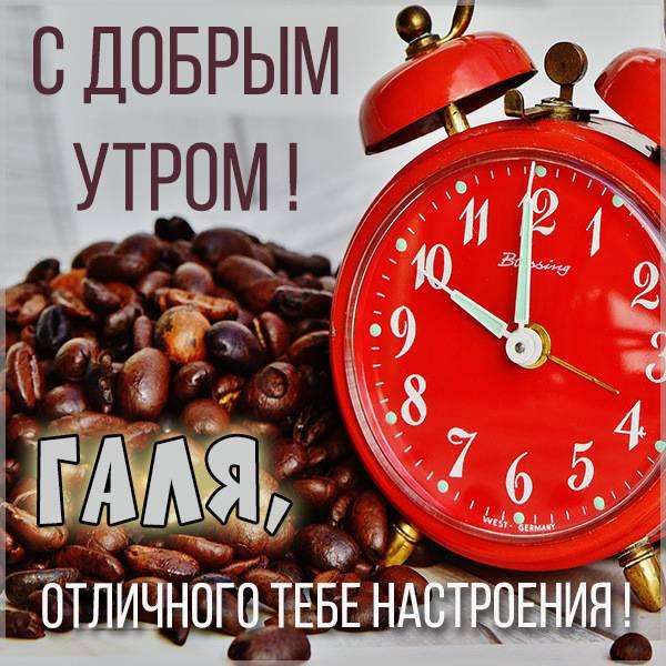 Открытка для Гали с добрым утром - скачать бесплатно на otkrytkivsem.ru
