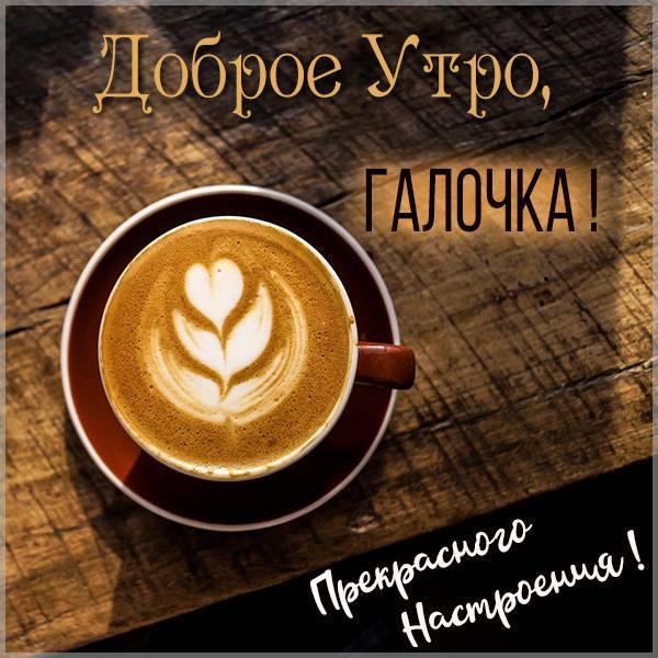 Открытка для Галочки с добрым утром - скачать бесплатно на otkrytkivsem.ru