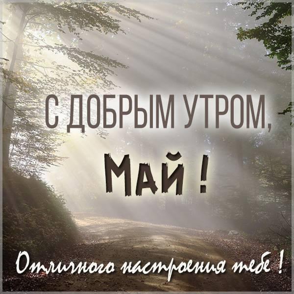 Открытка для Мая с добрым утром - скачать бесплатно на otkrytkivsem.ru