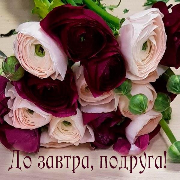 Открытка до завтра подруга - скачать бесплатно на otkrytkivsem.ru