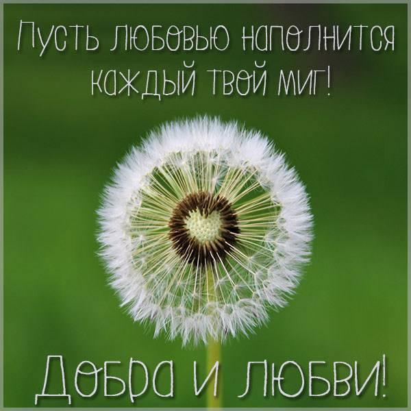 Открытка добра и любви - скачать бесплатно на otkrytkivsem.ru