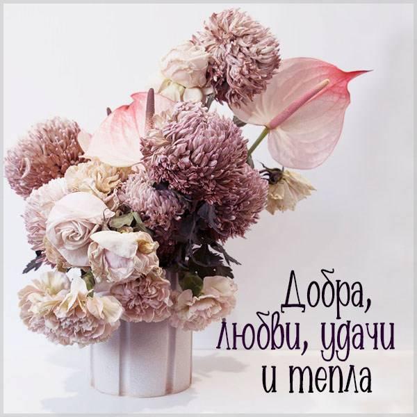 Открытка добра любви удачи и тепла - скачать бесплатно на otkrytkivsem.ru