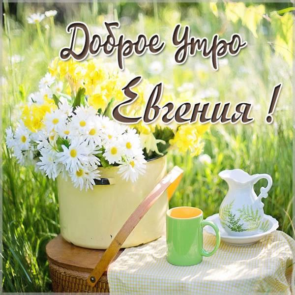Открытка доброе утро Евгения - скачать бесплатно на otkrytkivsem.ru