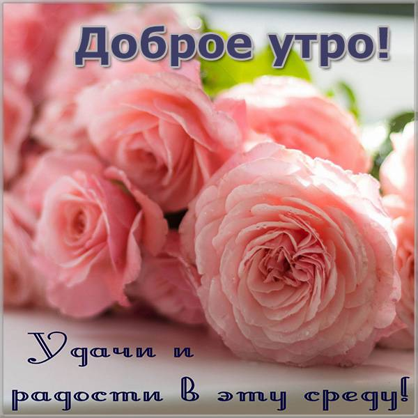 Открытка доброе утро хорошего дня среда - скачать бесплатно на otkrytkivsem.ru