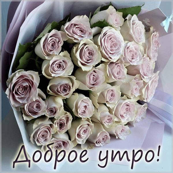 Открытка доброе утро с розами - скачать бесплатно на otkrytkivsem.ru