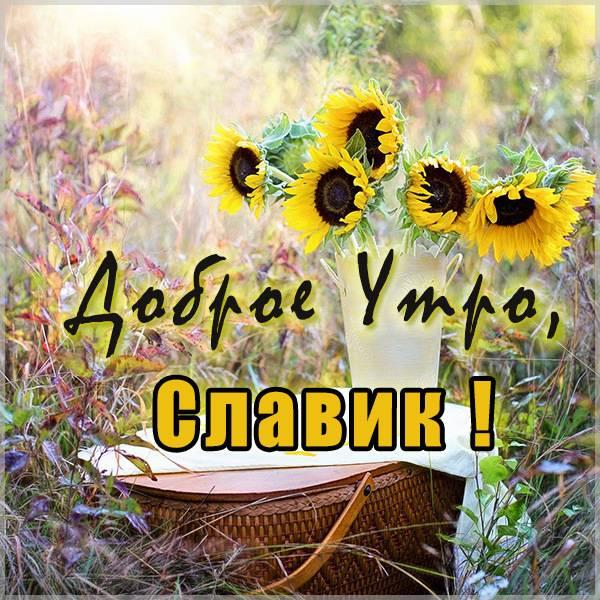 Открытка доброе утро Славик - скачать бесплатно на otkrytkivsem.ru