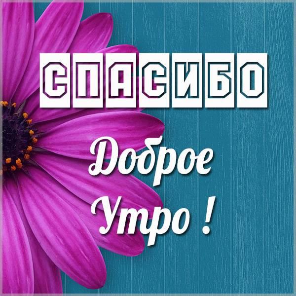 Открытка доброе утро спасибо - скачать бесплатно на otkrytkivsem.ru