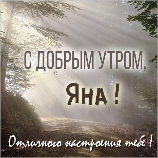 Открытка доброе утро Яна - скачать бесплатно на otkrytkivsem.ru