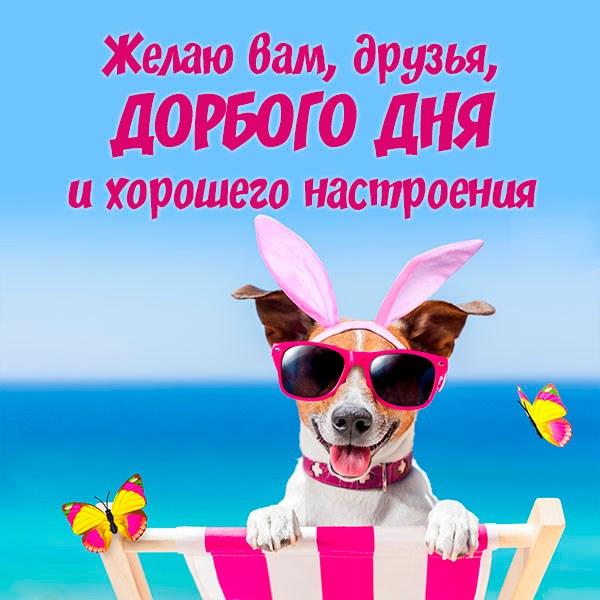 Открытка доброго дня хорошего настроения друзьям - скачать бесплатно на otkrytkivsem.ru
