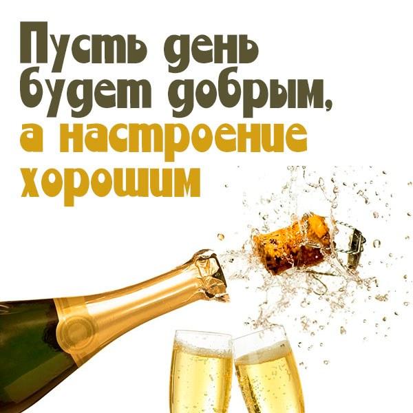 Открытка доброго дня и хорошего настроения прикольная - скачать бесплатно на otkrytkivsem.ru