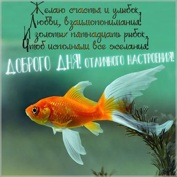 Открытка доброго дня отличного настроения мужчине - скачать бесплатно на otkrytkivsem.ru