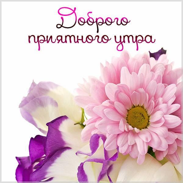 Открытка доброго приятного утра - скачать бесплатно на otkrytkivsem.ru