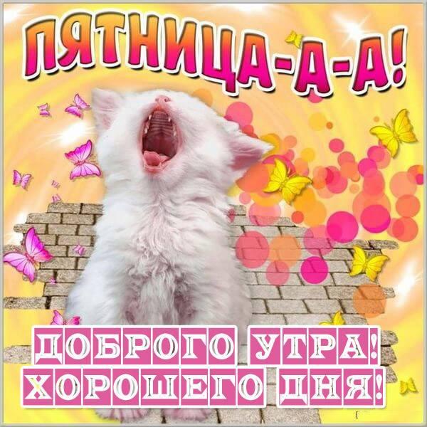 Открытка доброго утра пятницы и хорошего дня - скачать бесплатно на otkrytkivsem.ru