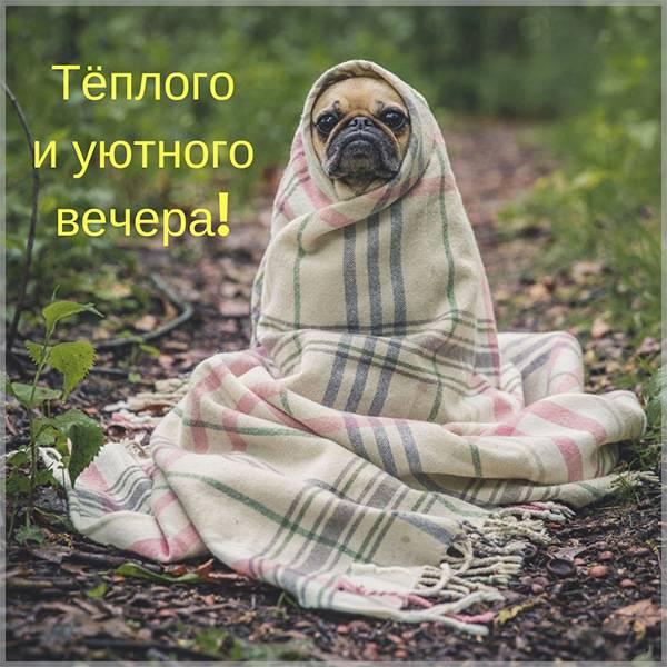 Открытка доброго вечера теплого уютного - скачать бесплатно на otkrytkivsem.ru