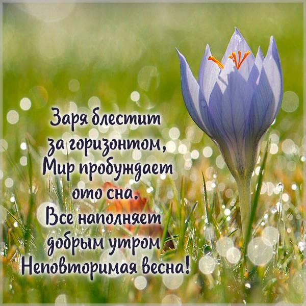 Открытка доброго весеннего воскресного утра - скачать бесплатно на otkrytkivsem.ru