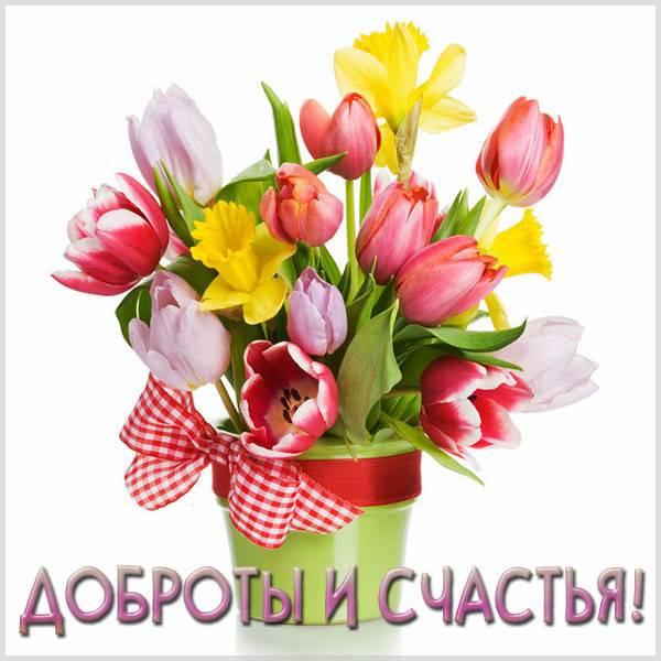 Открытка доброты и счастья - скачать бесплатно на otkrytkivsem.ru