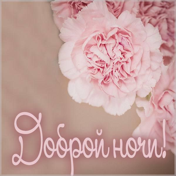 Открытка доброй ночи с цветами - скачать бесплатно на otkrytkivsem.ru