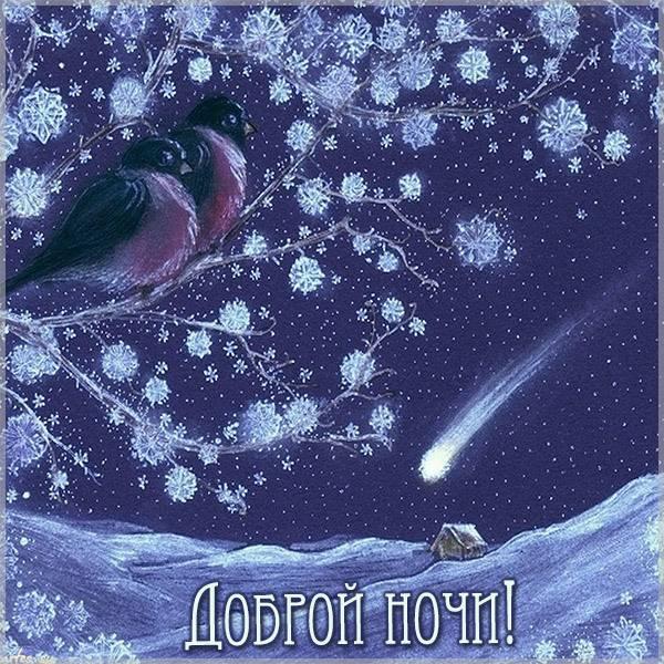 Открытка доброй ночи зима - скачать бесплатно на otkrytkivsem.ru