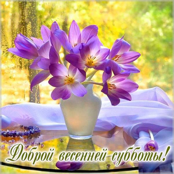 Открытка доброй весенней субботы - скачать бесплатно на otkrytkivsem.ru