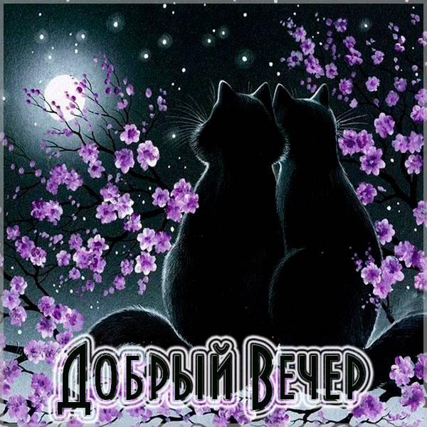 Открытка добрый вечер красивая позитивная весенняя - скачать бесплатно на otkrytkivsem.ru