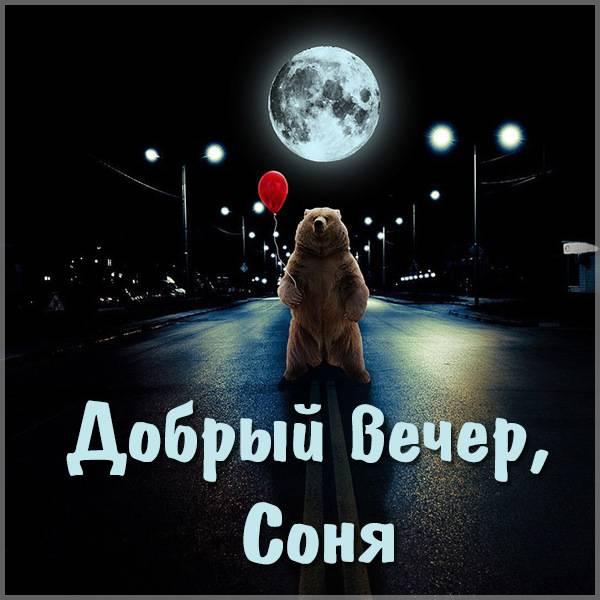 Открытка добрый вечер Соня - скачать бесплатно на otkrytkivsem.ru