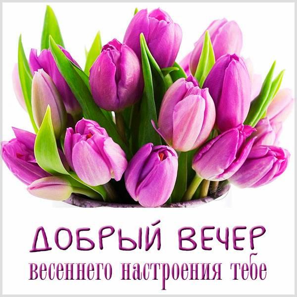 Открытка добрый вечер весеннего настроения тебе - скачать бесплатно на otkrytkivsem.ru