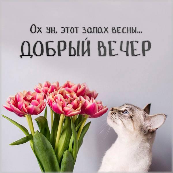 Открытка добрый вечер весенняя прикольная - скачать бесплатно на otkrytkivsem.ru