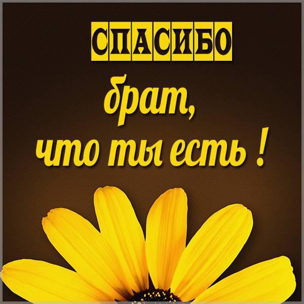 Открытка дорогому брату спасибо что ты есть - скачать бесплатно на otkrytkivsem.ru