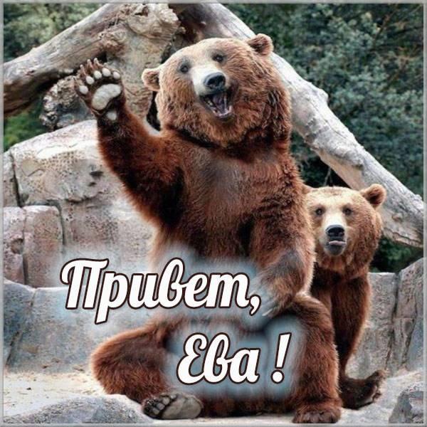 Открытка Ева привет - скачать бесплатно на otkrytkivsem.ru