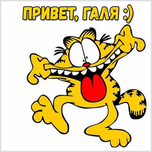 Открытка Галя привет - скачать бесплатно на otkrytkivsem.ru