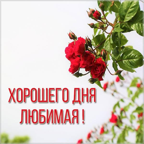 Открытка хорошего дня любимой женщине - скачать бесплатно на otkrytkivsem.ru