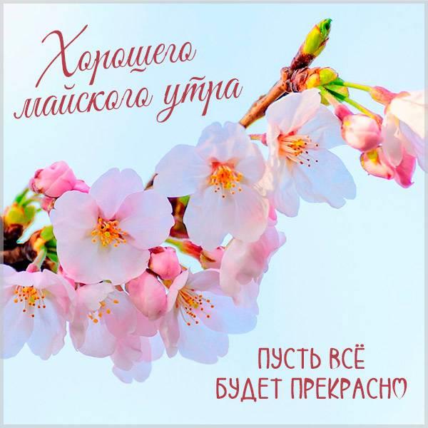 Открытка хорошего майского утра - скачать бесплатно на otkrytkivsem.ru