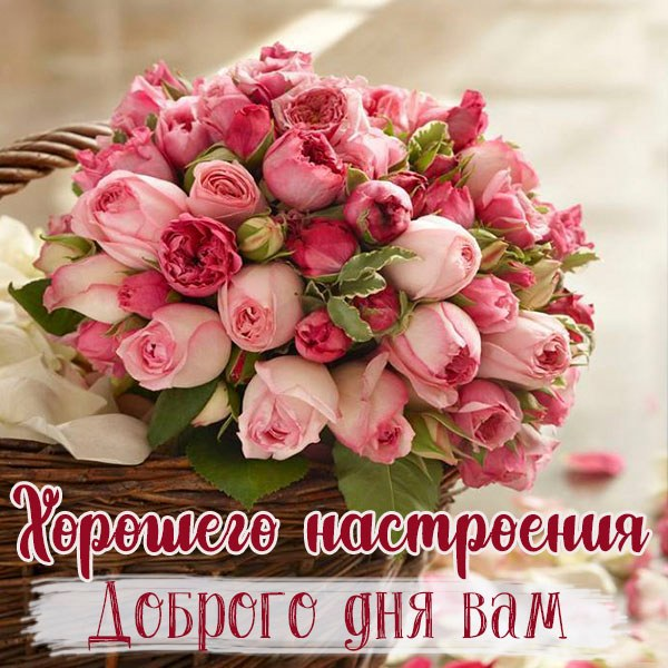 Открытка хорошего настроения доброго дня вам - скачать бесплатно на otkrytkivsem.ru