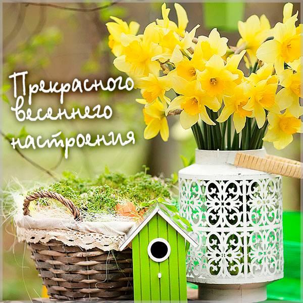 Открытка хорошего весеннего настроения - скачать бесплатно на otkrytkivsem.ru