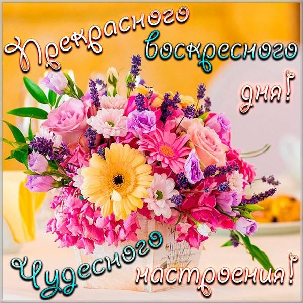 Открытка хорошего воскресенья и отличного настроения - скачать бесплатно на otkrytkivsem.ru