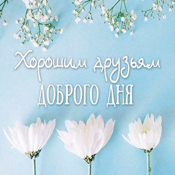 Открытка хорошим друзьям доброго дня - скачать бесплатно на otkrytkivsem.ru