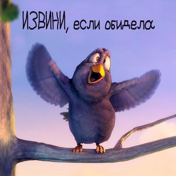 Открытка извини если обидела - скачать бесплатно на otkrytkivsem.ru