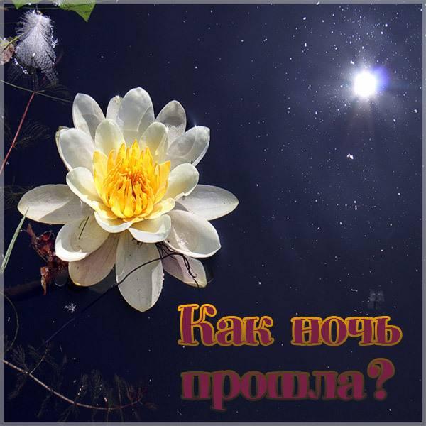 Открытка как ночь прошла - скачать бесплатно на otkrytkivsem.ru