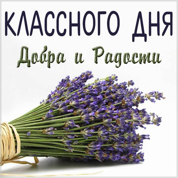 Открытка классного дня - скачать бесплатно на otkrytkivsem.ru