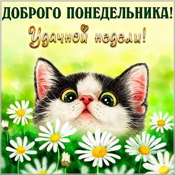 Открытка легкого понедельника и удачи - скачать бесплатно на otkrytkivsem.ru