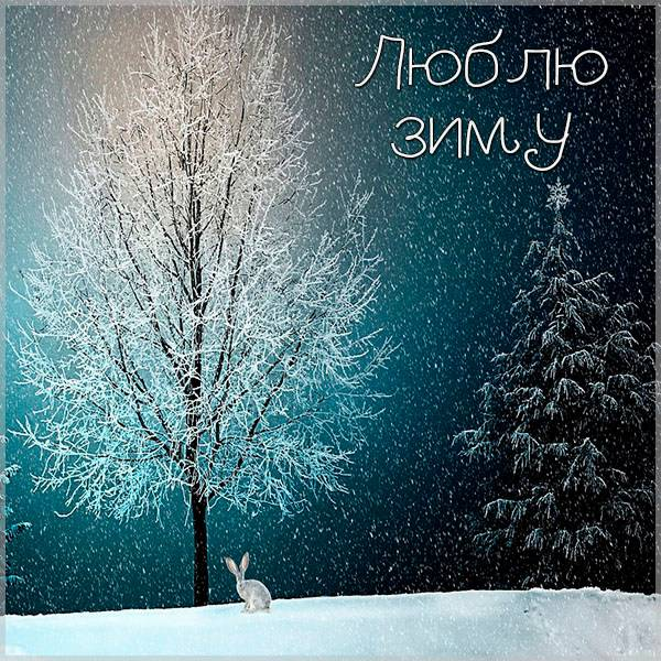 Открытка люблю зиму - скачать бесплатно на otkrytkivsem.ru