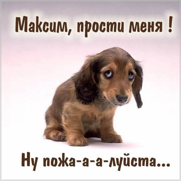 Открытка Максим прости меня - скачать бесплатно на otkrytkivsem.ru