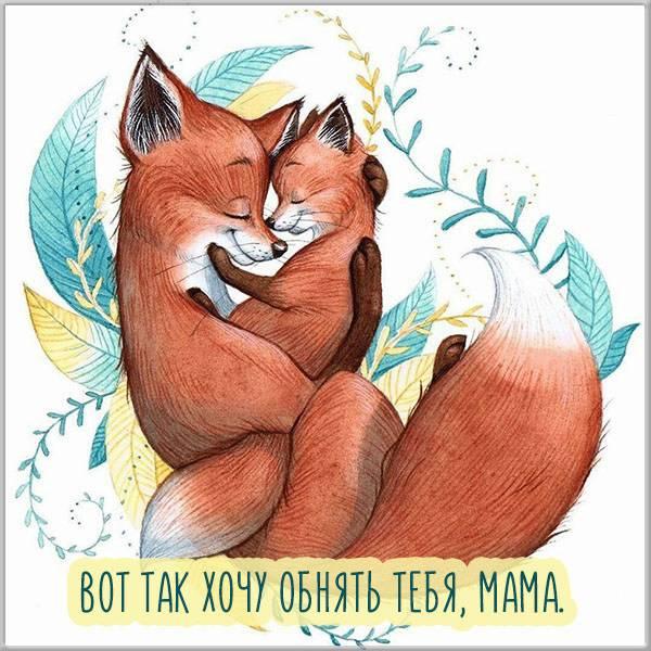 Открытка маму обними - скачать бесплатно на otkrytkivsem.ru