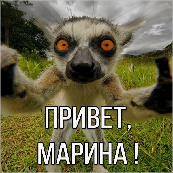 Открытка Марина привет - скачать бесплатно на otkrytkivsem.ru