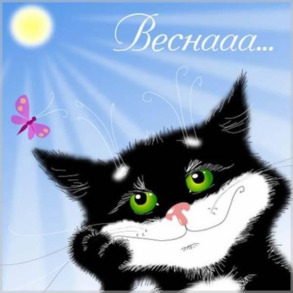 Открытка на 1 марта день кошек - скачать бесплатно на otkrytkivsem.ru
