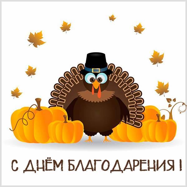 Открытка на день благодарения смешная - скачать бесплатно на otkrytkivsem.ru