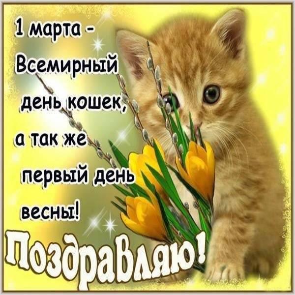 Открытка на день кошек 1 марта с поздравлением - скачать бесплатно на otkrytkivsem.ru